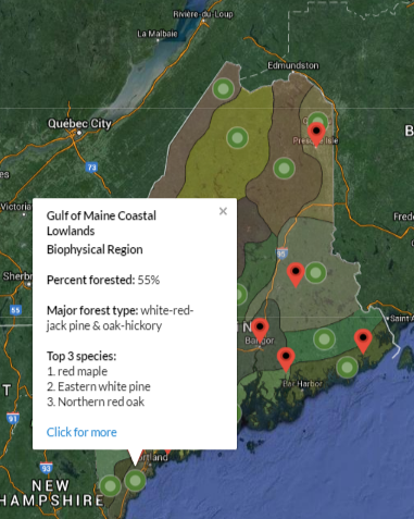 Gulf of Maine Coastal Lowlands Maine biophysical region