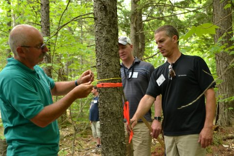 Maine North Woods Teacher Tour 2016
